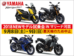 2018_new_yamaha_bike.jpg